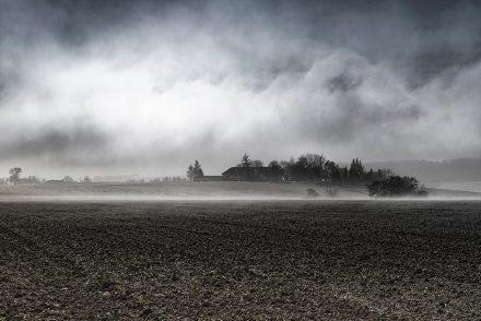 Foto Nebelschwaden Feld