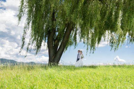 Fotografie Hochzeit Paarfoto unter Baum