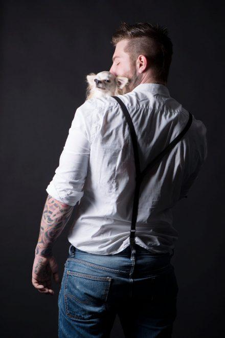 Tierfotografie Chihuahua im Studio